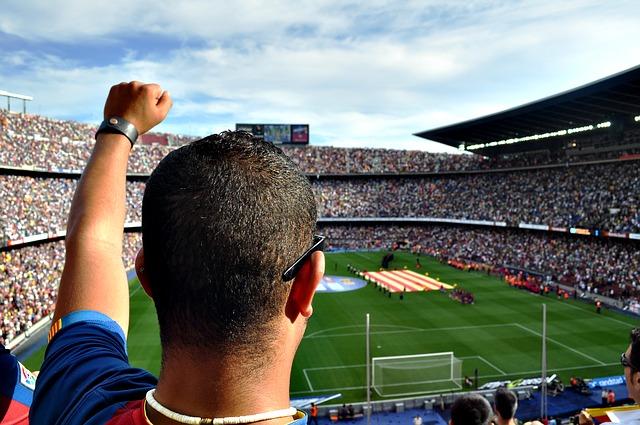 Beliebtheitsstudie zur Fußball Bundesliga
